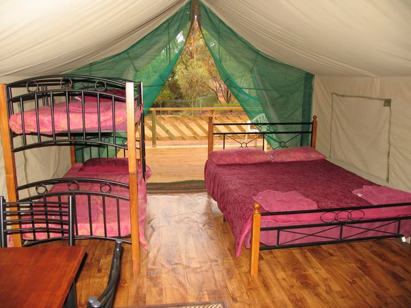 Safari tent - Inside